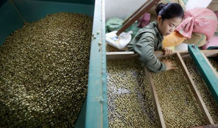 Asia Coffee-Vietnam prices hover near 4-year high, harvest nears end in Indonesia