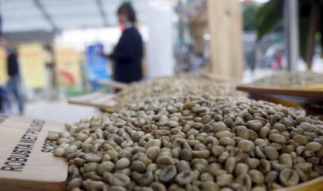 Vietnam coffee exports to UK plummet